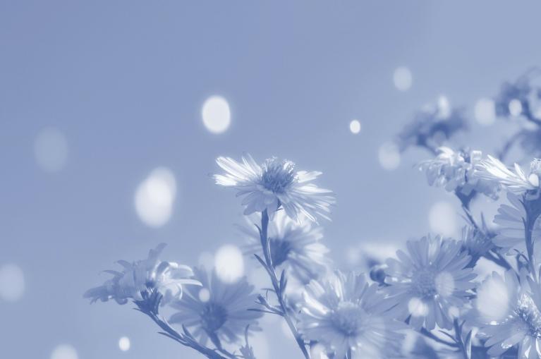 צמחים בהנקה- מה אסור ומה מותר?